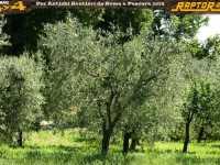 roma-pescara-4x4-off-road2014-terzo-0068