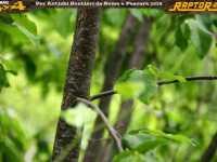 roma-pescara-2014-secondo-0226
