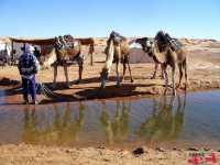 tunisia_deserto_2013_mer-278