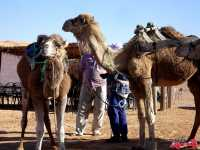 tunisia_deserto_2013_mer-280