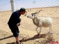 tunisia_deserto_2013_ven-199