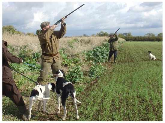 caccia cani apertura fucile